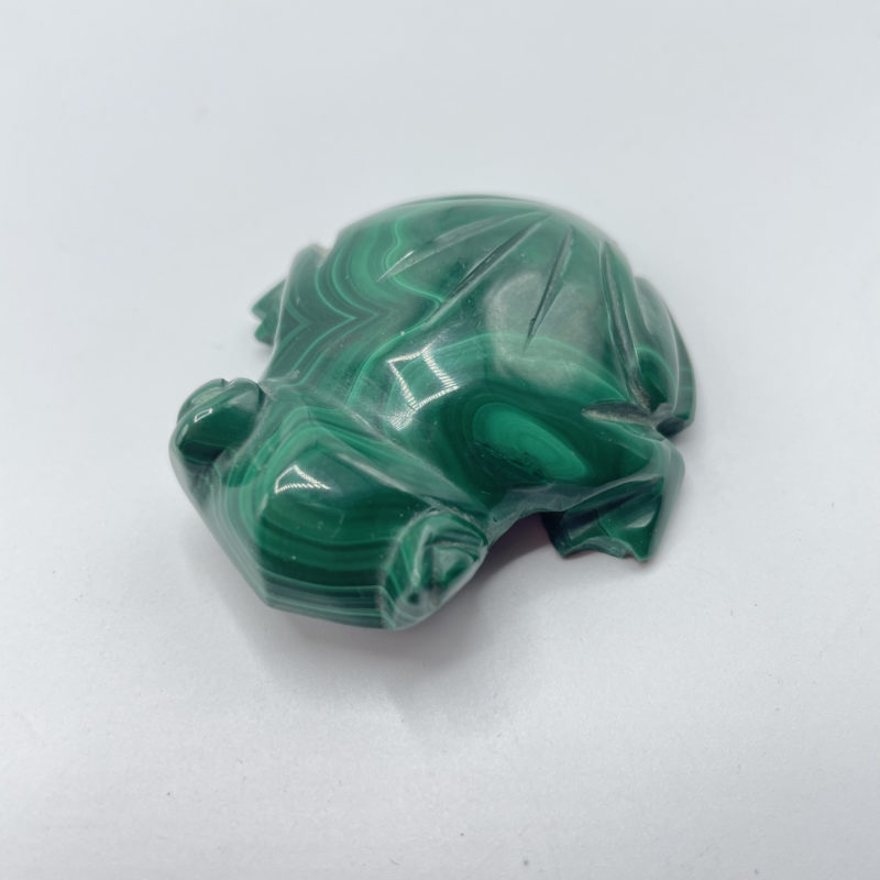 grenouille jade