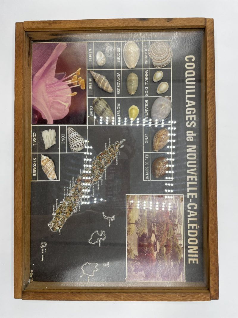 cadre coquillage