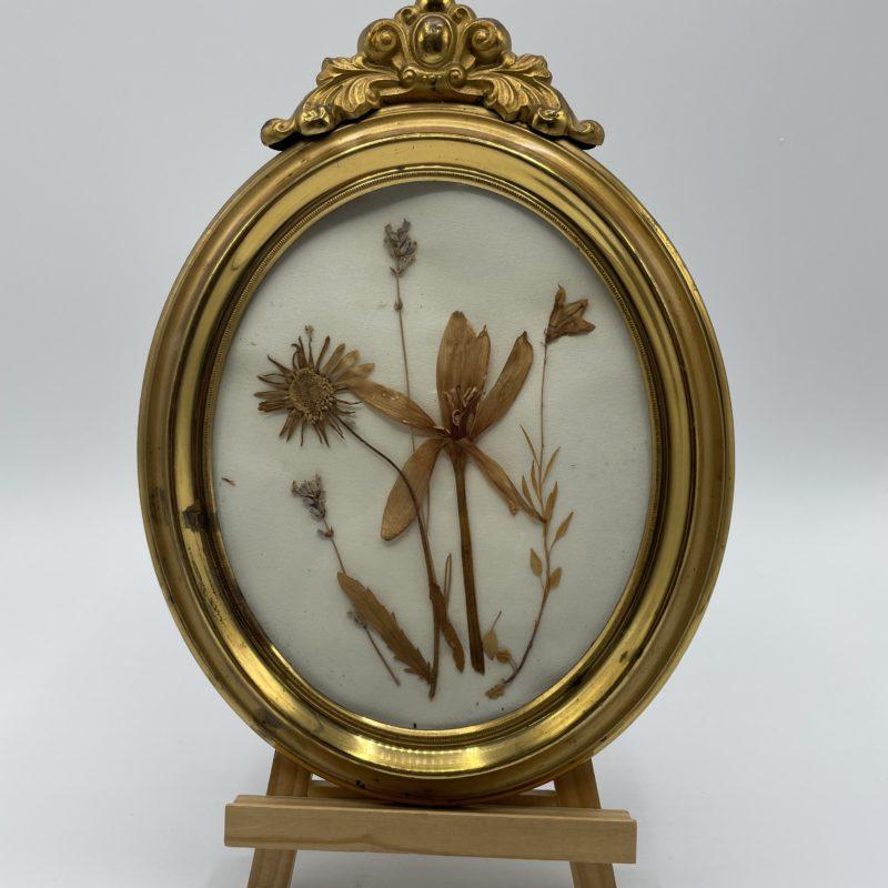 cadre dore fleurs sechees deco vintage